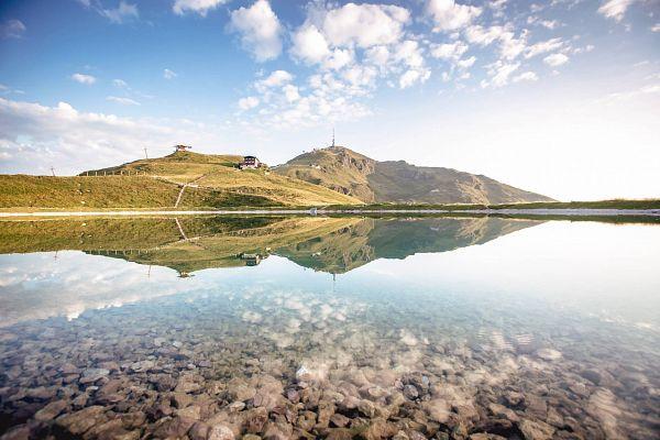 Wanderregion Kitzbühel   Wanderweg mit Alpenblumen-Panorama